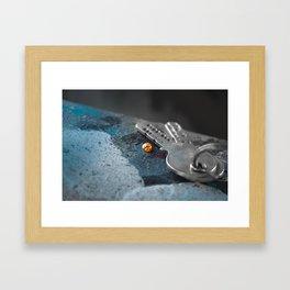 Lonely Ladybug Framed Art Print