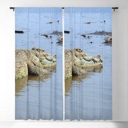 African Nile Crocodile, Wildlife, Ethiopia, Africa Blackout Curtain