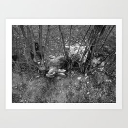 Dead Rabbit Dead. Art Print