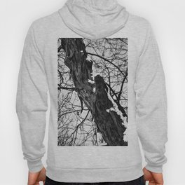 Bark and snow Hoody