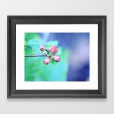 Hello Sweet Spring  Framed Art Print