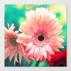 Sunny Love I Canvas Print