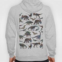 New Dinosaurs pattern Hoody