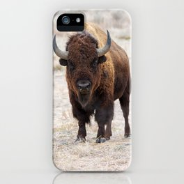 In The Presence Of Bison #society6 #decor #bison by Lena Owens @OLena Art iPhone Case