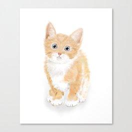 Cute Tiny Cat Canvas Print