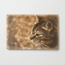 Dreamy cat Metal Print