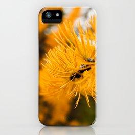 Golden Needles iPhone Case