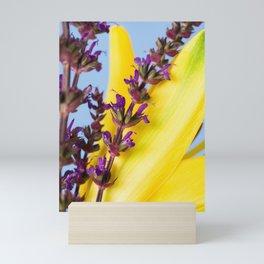 Salvia and Lily 2 Mini Art Print