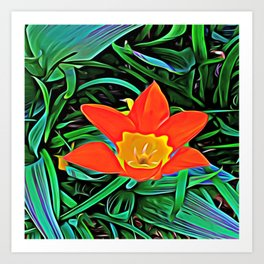 Flower of Enchanted Orange Flow Art Print