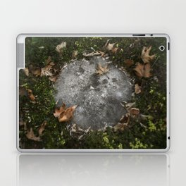 moon on the earth Laptop & iPad Skin