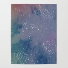 Animals in space Poster