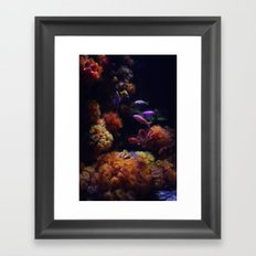 tropical sea Framed Art Print