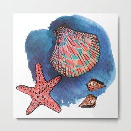 Seashells and starfish Metal Print