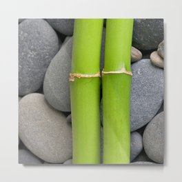 Green Bamboo Sticks on Pebble Metal Print