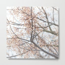 Tree with coral berries and flowers Metal Print