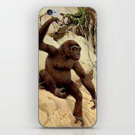 Kuhnert, Friedrich Wilhelm (1865-1926) - Wild Life of the World 1916 v.3 (Gorilla) iPhone Skin