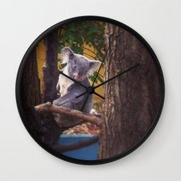 Kozy Koala 2 Wall Clock