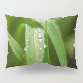 Drop Pillow Sham