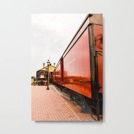 9 3/4 Express Metal Print