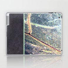 concrete.dragOnfly Laptop & iPad Skin
