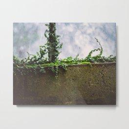 wall flower Metal Print