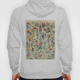 Flowers Vintage Scientific Illustration French Language Encyclopedia Lithographs Educational Hoody