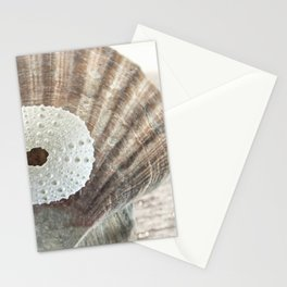 """ArtfulNotions 281"" Seashell Art by Murray Bolesta Stationery Cards"