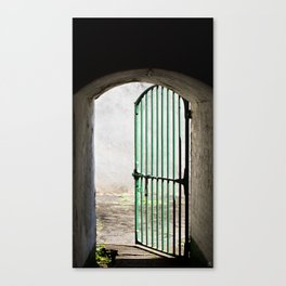 BAIL Canvas Print