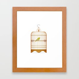Bird Cage Framed Art Print