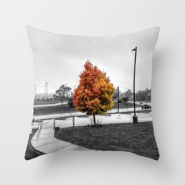 Fall Colors - Fall Foliage Photo Throw Pillow