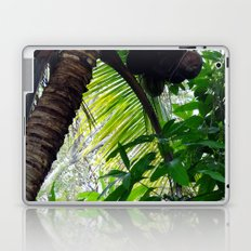 Coconut Palm Laptop & iPad Skin