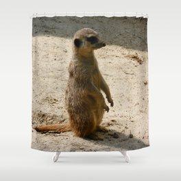 Meerkat Shower Curtain