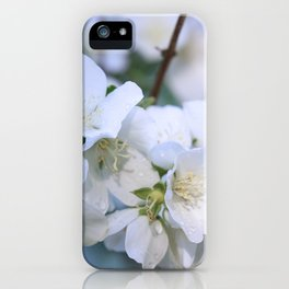 Hawthorne Flowers After Rain iPhone Case