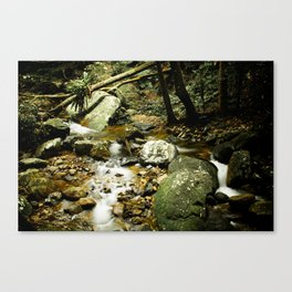 Vintage Forest Canvas Print