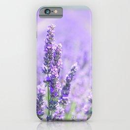 Lavender Blossom Flowers Landscape iPhone Case