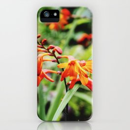 Nothing rhymes with orange iPhone Case