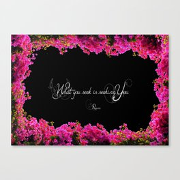seek Canvas Print