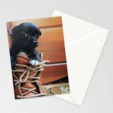 Teddy.  Stationery Cards