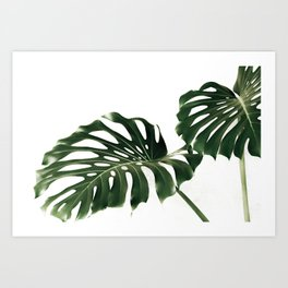 Minimalist Monstera Art Print