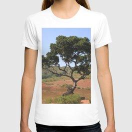 Lone Tree Indian Countryside Landscape, Odisha, India T-shirt