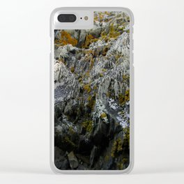 Coastal Rock Microcosms Clear iPhone Case