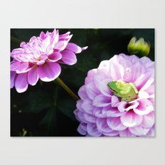 Nature Photography Canvas Print