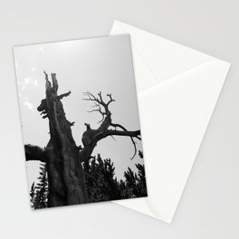 tree film Stationery Cards