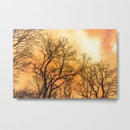 Orange cloudy sky over scary naked trees Metal Print