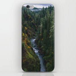 Skokomish River, Shelton iPhone Skin