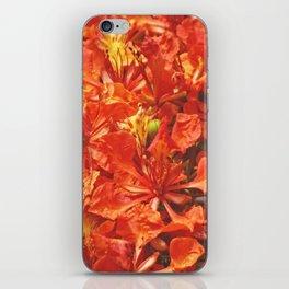Delonix iPhone Skin