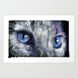Cats Eyes Art Print