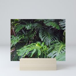 Hawaii Tropicals 02 Mini Art Print