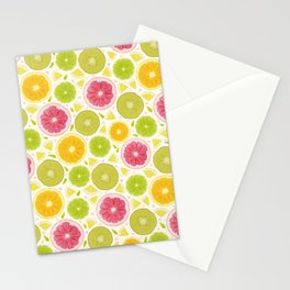 Summer Lemonade // Citrus Illustration // Spring Bright Colorful Fruits Stationery Cards