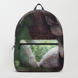 Amazingly Gorgeous Little Koala Bear Resting On Tree Branch Ultra High Resolution Backpack
